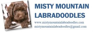 Misty Mountain Labradoodles