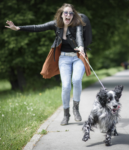 Dog drags lady on a walk
